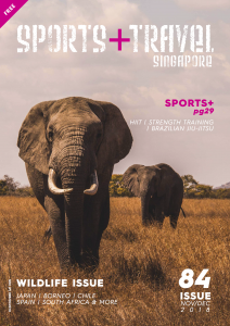 Sports Travel Mag Issue 84 Screen (dragged)